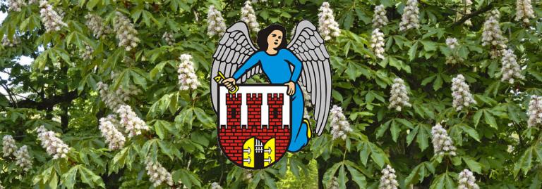 Życzenia dla maturzystów od Prezydenta Miasta Torunia